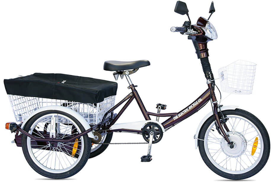 Transporter Electric Bike